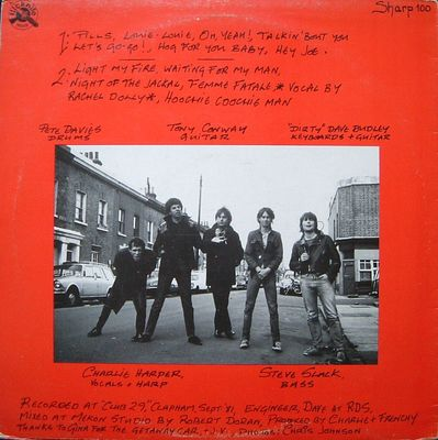 Back cover of the Stolen Property LP - click to enlarge